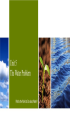 全新版大學進階英語-Book-1--Unit-5-The-Water-Problem---What's-the-world-to-do-about-water